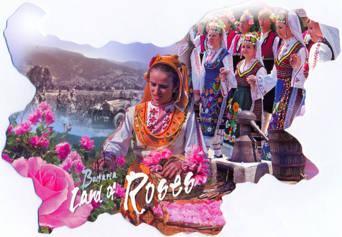 Болгария Розы