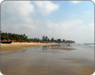 Гоанский пляж