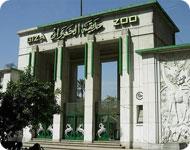 Зоопарк в Гизе