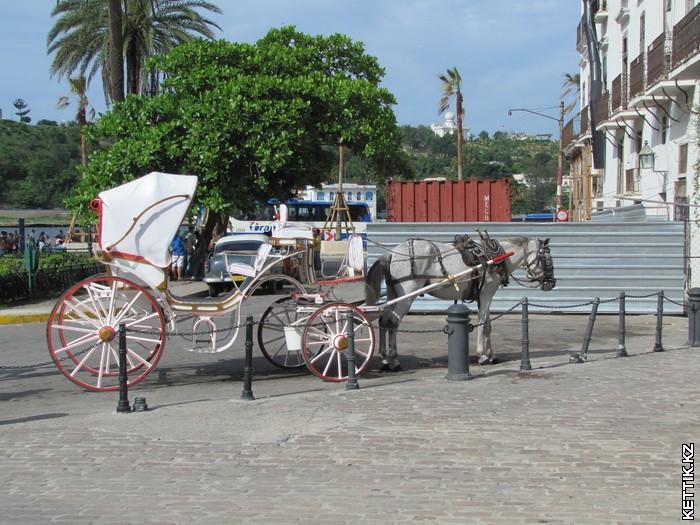 Рессорная коляска
