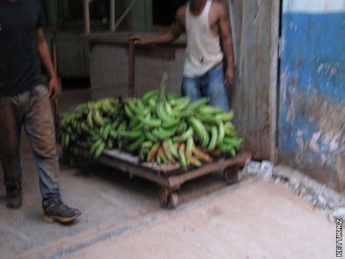 Разгрузка бананов