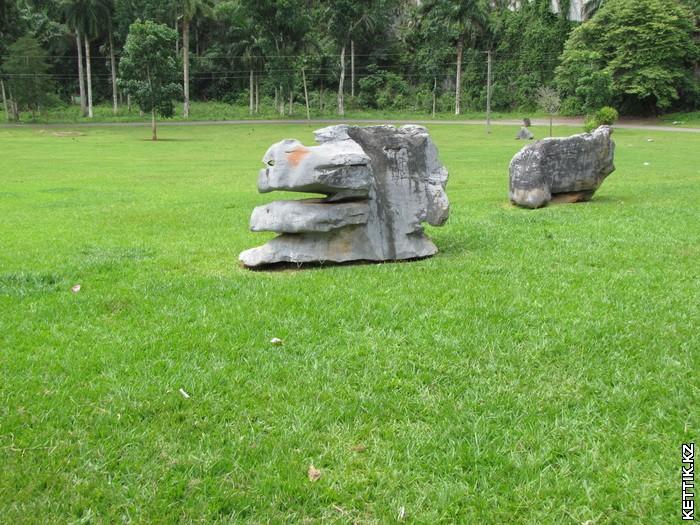 Интересные камни