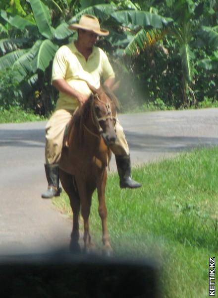 Кубинские крестьяне