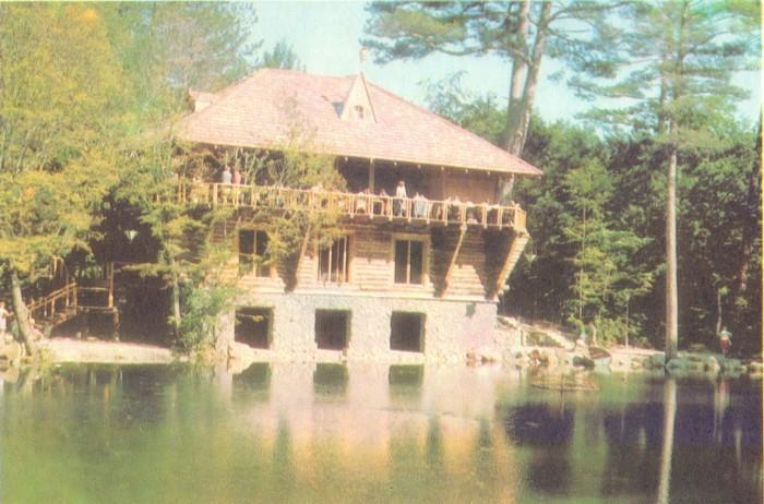 Ресторан Лесной