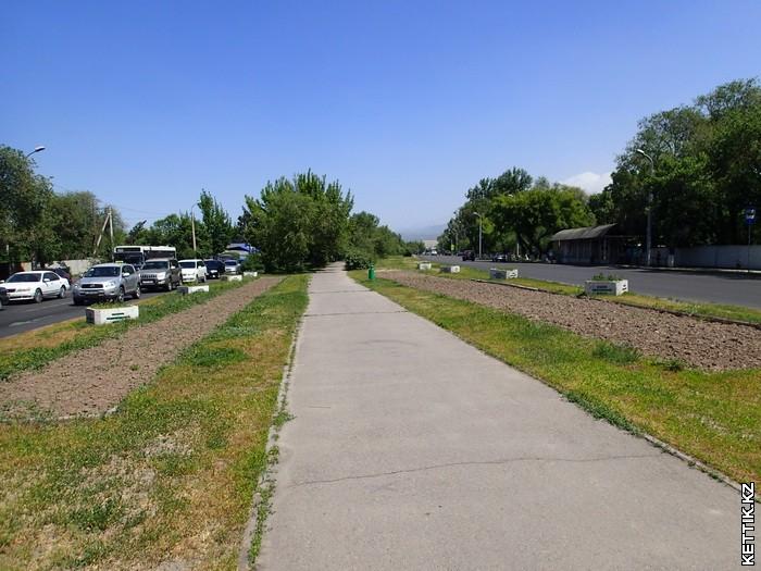Дорожка на Ташкентской