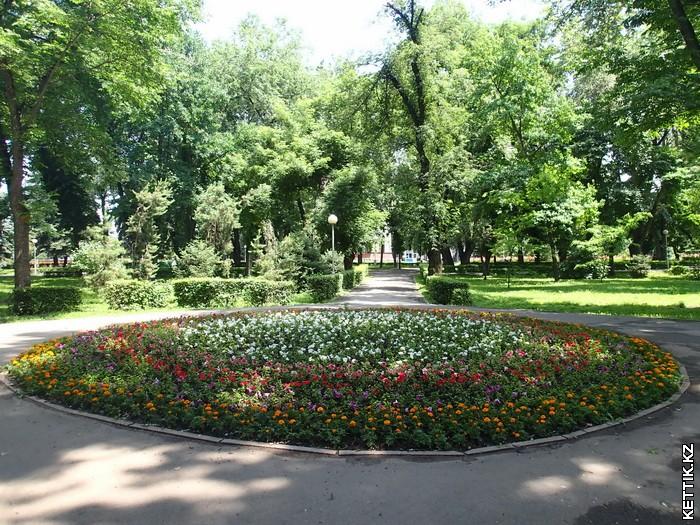 Цветы в парке