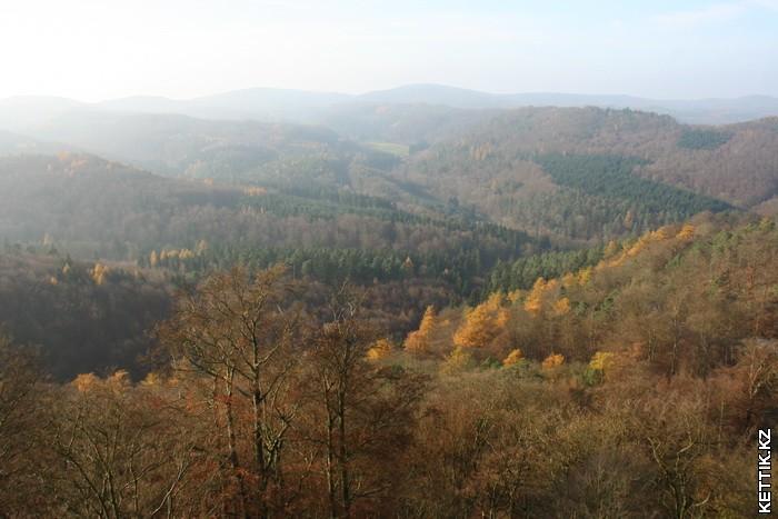 Тюрингский лес
