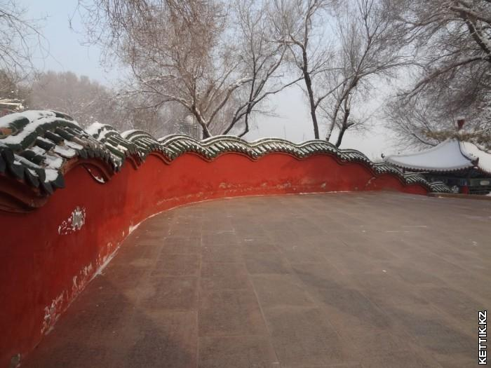 Забор дракон