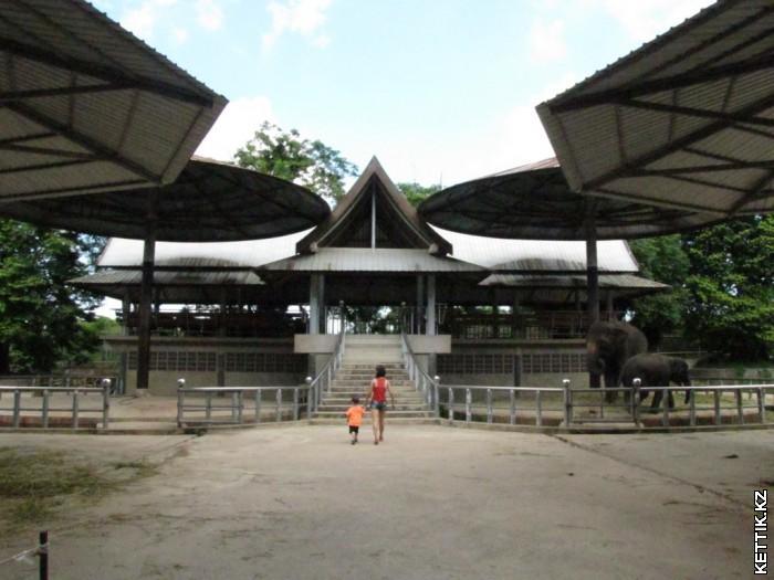 Слоновья станция