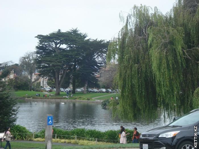 парк Уолтера С Джонса