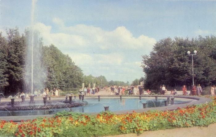 Главная аллея парка