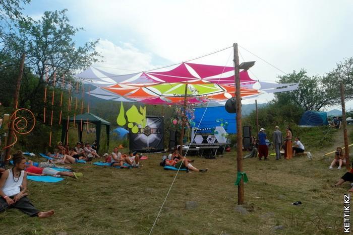 Активность фестиваля