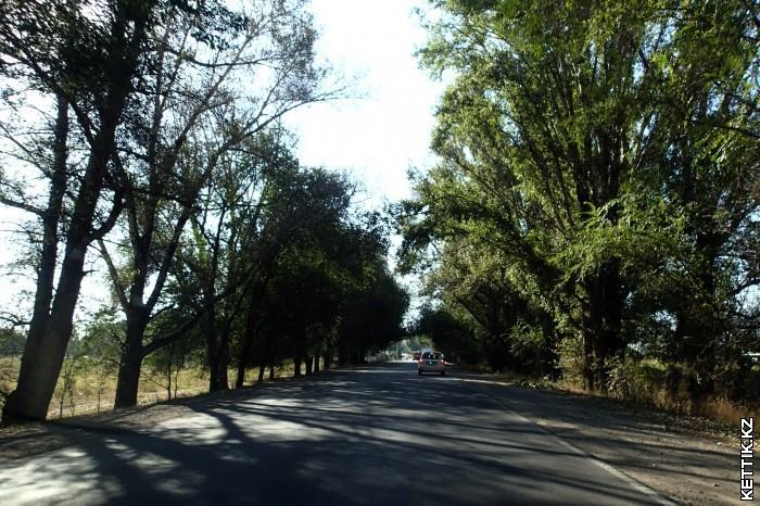 Дорога под Алматы