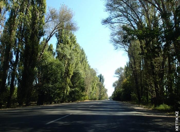Кульджинка