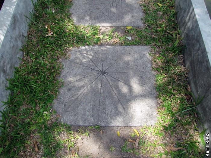 Отпечатки на бетоне