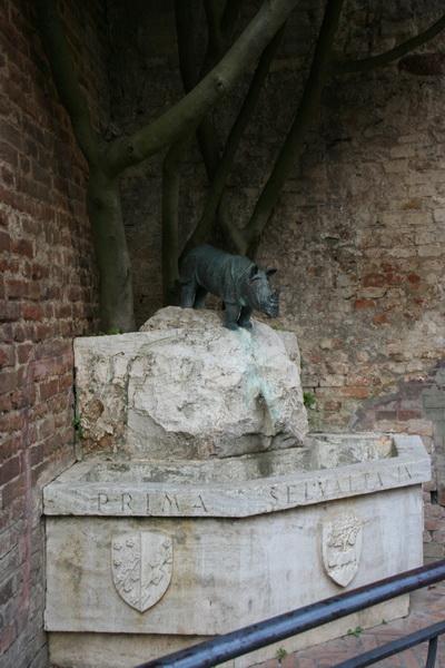 Фонтан-носорог