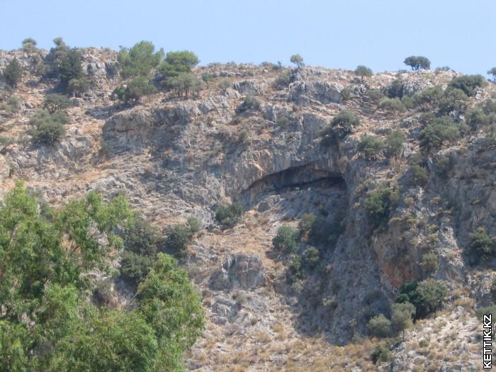 Козы на скалах