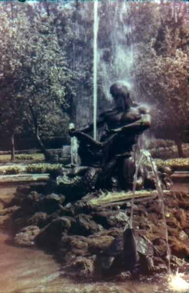 Оранжерейный фонтан