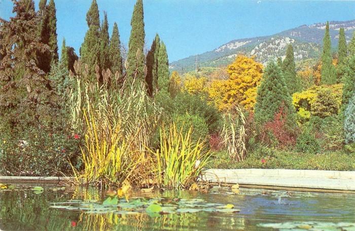 Бассейн в Верхнем парке