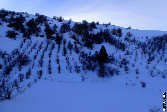 Горы Бельбулак