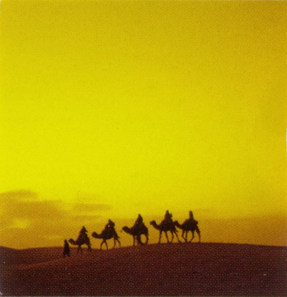 Арабские виды